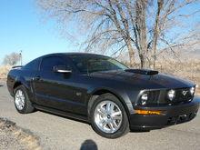 My Mustang!