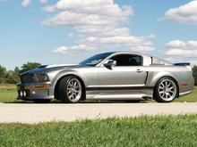 MUSTANG ELEANOR (Cervini's)  - my new Toy