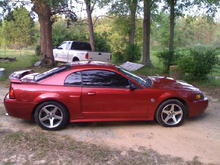 my stang pics 004