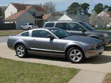 Mustang of Love