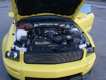 Yellow Mustang engine