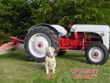 1948 Ford 8N Tractor.  Oh, and my dear friend Zoe