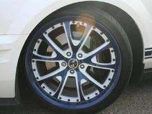 son's '09 GT500 w/Shelby wheels