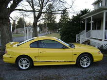 Mustang (9)