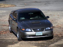 Photo Shoot at the local Park my Mustang Dominican7 Solo.