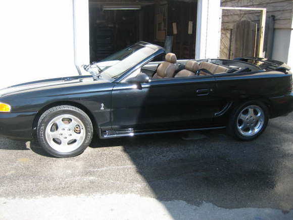 1995 top down