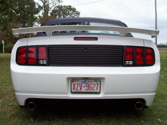 NEW MUSTANG PIC 13