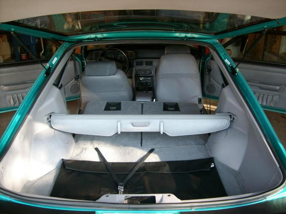Mustang 012