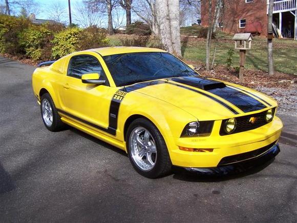 Mustang 041 (Small)