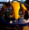 Gold Kart w/ Briggs Animal  for sale $800
