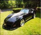 1981 Custom Corvette