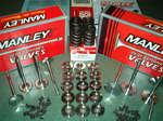 Manley SD valves+ titanium rets + springs