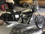 Harley Collector Bike
