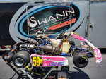 2009 Arrow AX9 125cc Shifter Kart
