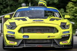 2017 Ford Mustang GT4   for sale $175,000