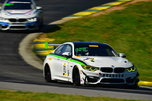 2018 BMW M4 GT4  for Sale $189,500