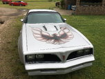 1977 Pontiac Firebird  for sale $22,000