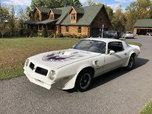1976 Pontiac Firebird  for sale $17,500