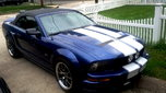 2006 Ford Mustang  for sale $20,500
