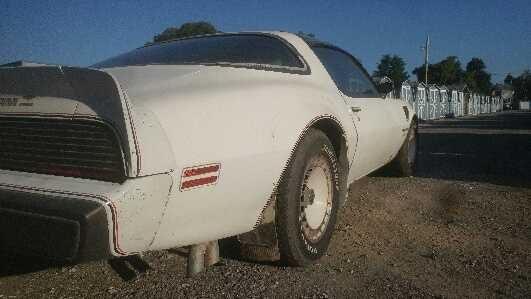1980 PONTIAC TRANS AM  for Sale $19,949