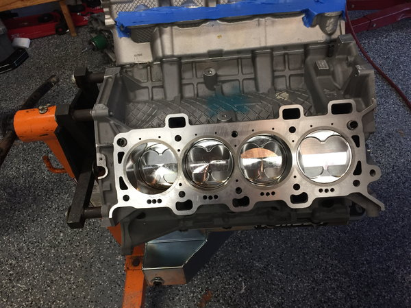 Coyote short block   for Sale $6,200
