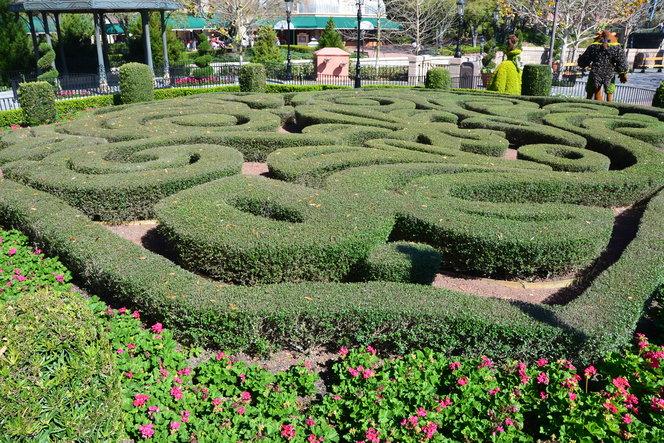 Knot garden in France.