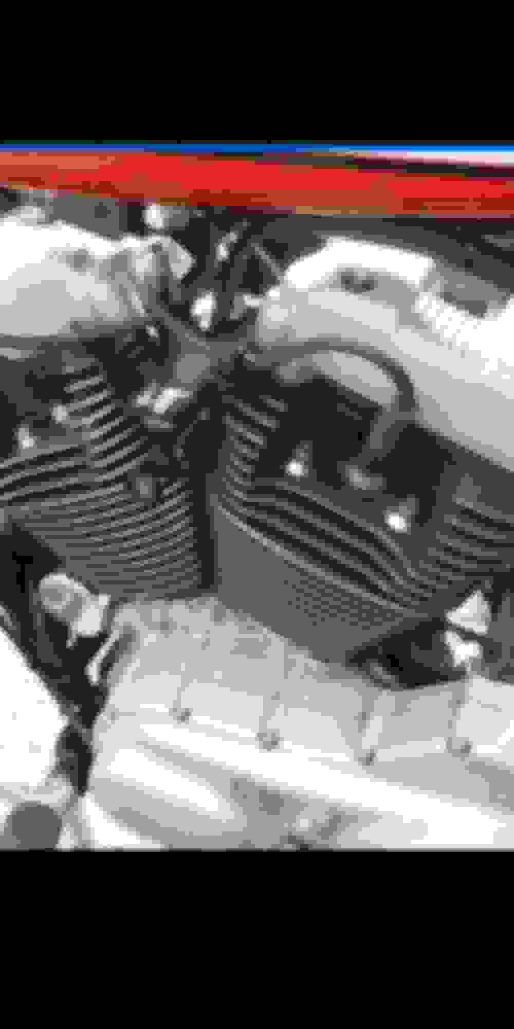 1340 sportster??? - Page 2 - Harley Davidson Forums