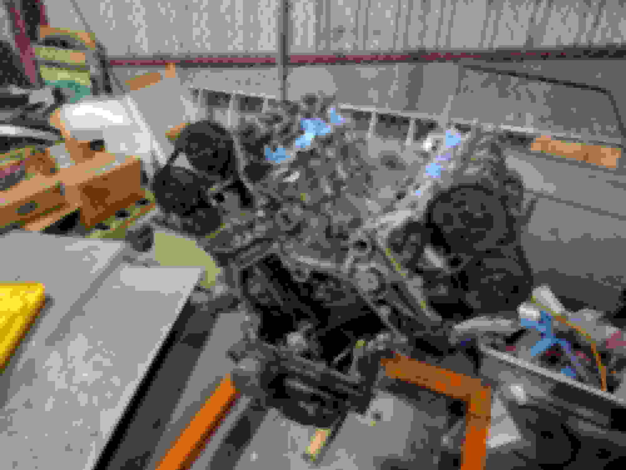 5 0 S/C Engine Rebuild - Jaguar Forums - Jaguar Enthusiasts