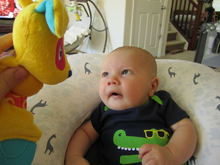 Untitled Album by Sarah:Marie:IVF:Mommy - 2011-07-07 00:00:00