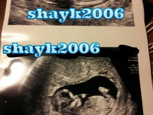 Untitled Album by shayk2006 - 2012-03-27 00:00:00