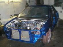 blue scoob (16)