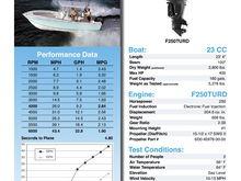 bulletin 4stroke hpv6 sws ii reg 23cc f250turd (2)