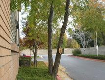278 Apartments For Rent In Salt Lake City Ut Apartmentratings