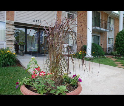 Park Colony Apartments Des Plaines Reviews