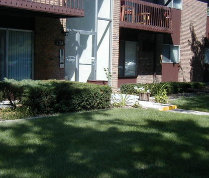 reviews prices for arbor forest apartments east lansing mi