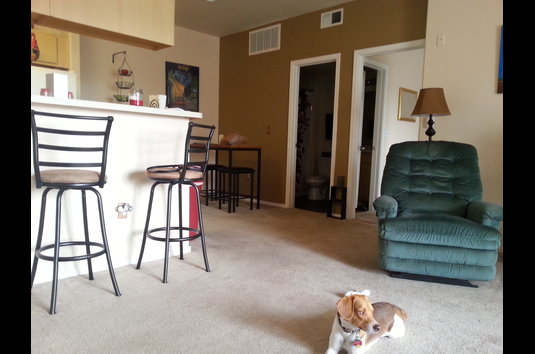 Stone Canyon Apartments Review - I have lived at this