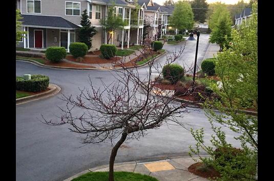 The Villas at Kennedy Creek Apartments - 77 Reviews
