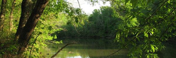 Avonlea on The River