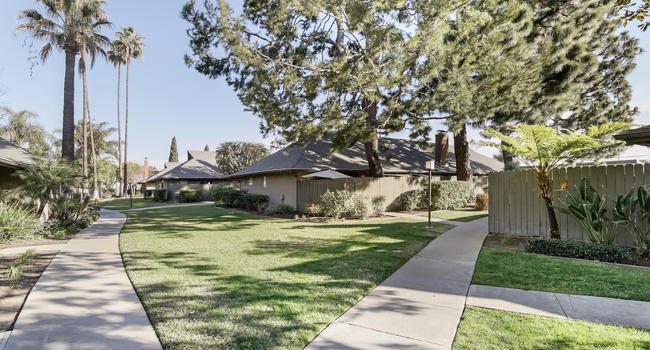 Image Of Mango Tree Apartments In Santa Ana Ca