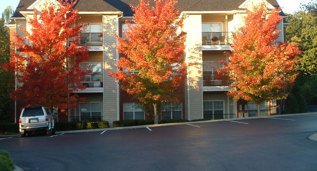 Preserve at Brentwood Apartments - 111 Reviews | Nashville ...