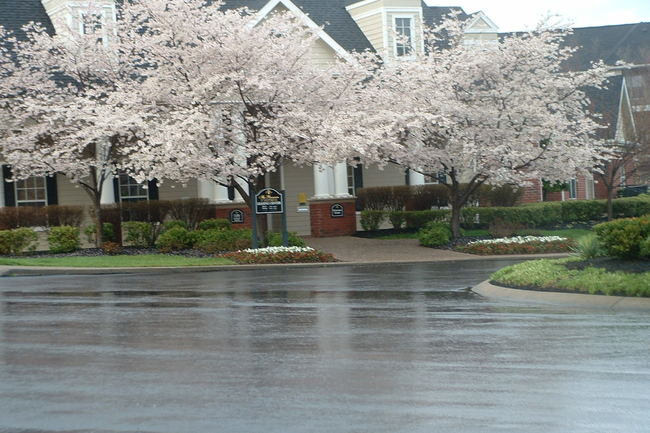 Resident Photo Of Preserve At Brentwood Apartments In Nashville Tn