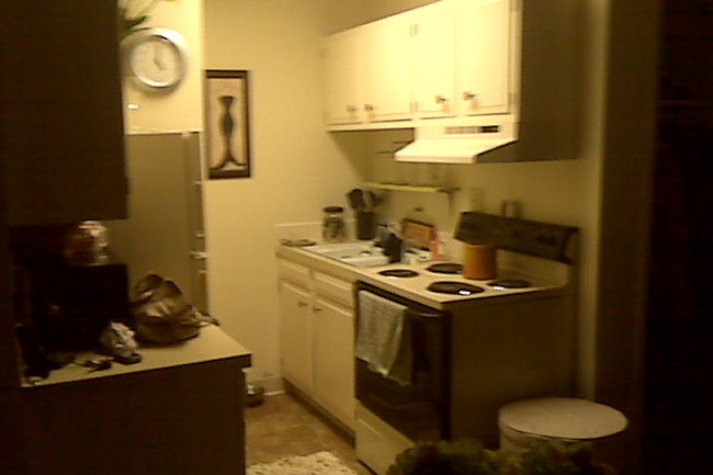 Ramblewood 61 Reviews Fort Collins Co Apartments For Rent
